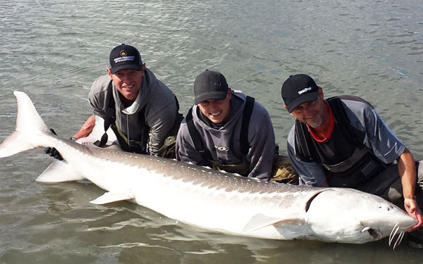 sturgeon fishing Vancouver